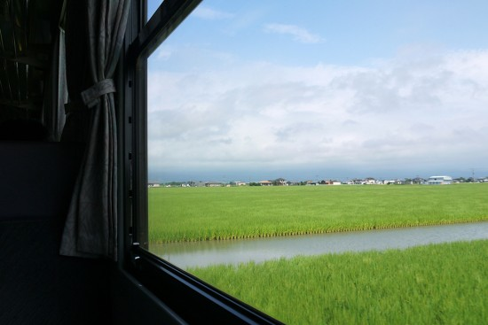 Paddy field through train windon on the way to Shimabara